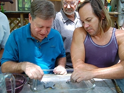Wayne and Harlan etching slices specimens